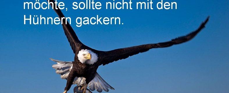 Das ist ein Adler